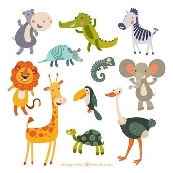 A day at the zoo essay - Sns 2018